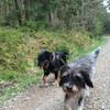 Meggie und Charlie