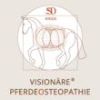 Visionäre Pferdeosteopathie Ausbildung Logo
