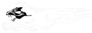 Fahrschule Aslan Logo