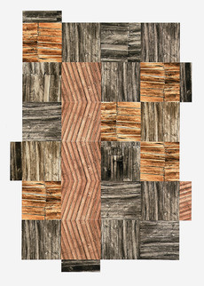 Holzwurm (90x70 cm) - Baryt / Schwefel- und Goldtonung auf Karton