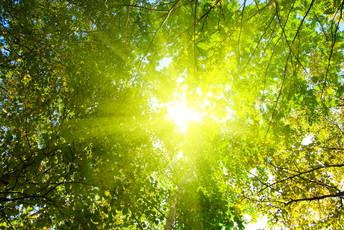 Sensitive Beratung, Lebensqualität, Energie und Balance
