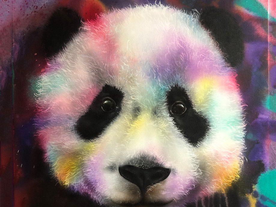Panda 60x60